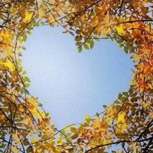 Visualización para el corazón