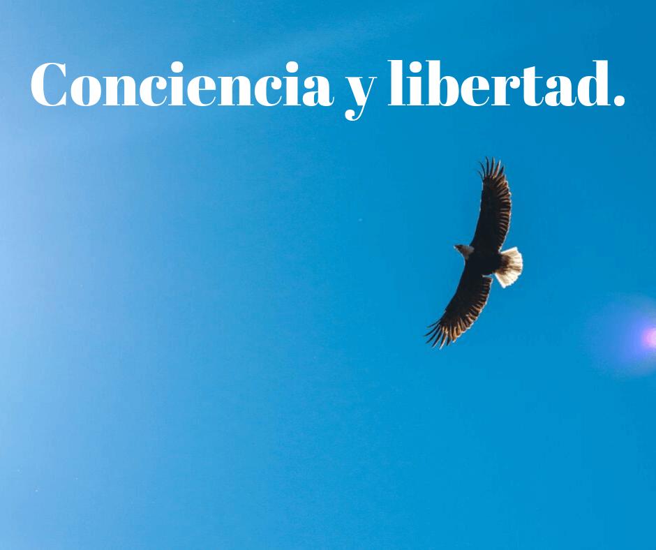 Conciencia y Libertad